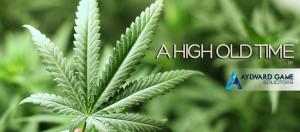 marijuana-in-field